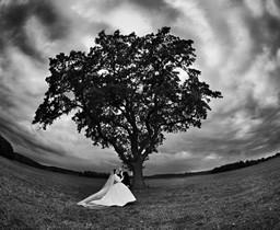 ikonka-ślub-256x210