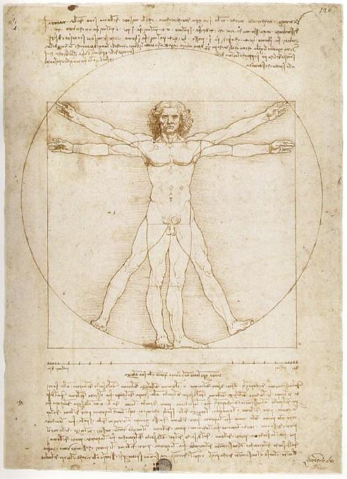 """""""Czlowiek Witruwianski"""" idealne proporcje według Leonarda da Vinci"""
